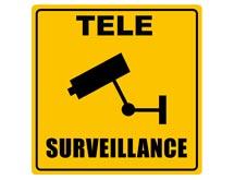 telesurveillance